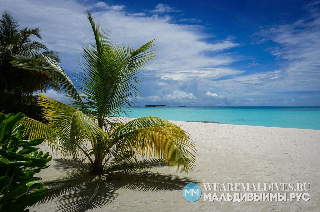 Пляж и вид на океан мальдивского острова отеля Angsana Velalvaru