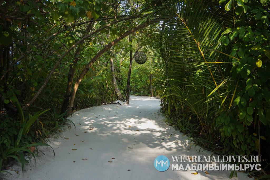 Дорога среди тропических джунглей на острове Хуфавен Фуши