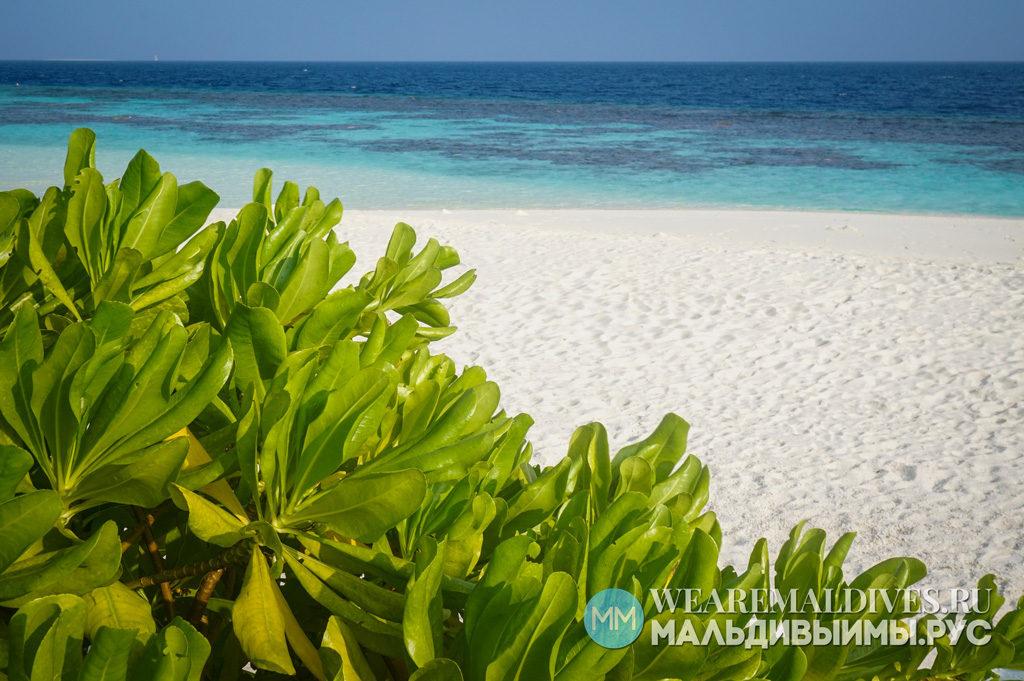 Пляж на острове Хувафен Фуши на Мальдивах