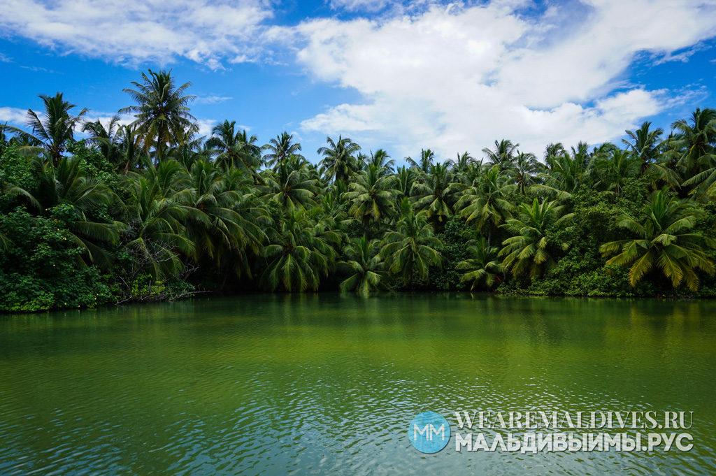 Озеро с пресной водой на острове на Мальдивах