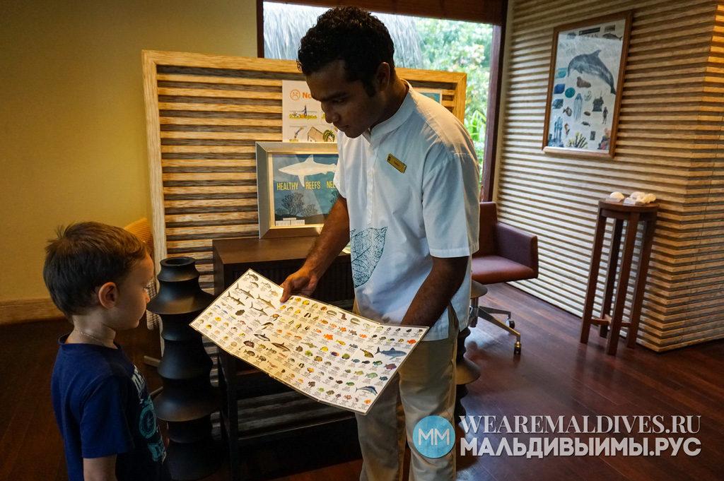 Морской биолог знакомит ребенка с обитателями индийского океана на Мальдивах
